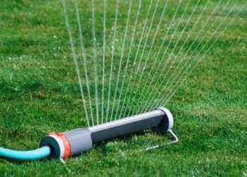 Система орошения и полива растений