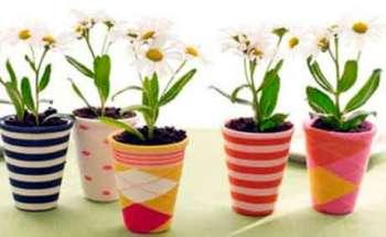 Способы ухода за растениями. Часть 2
