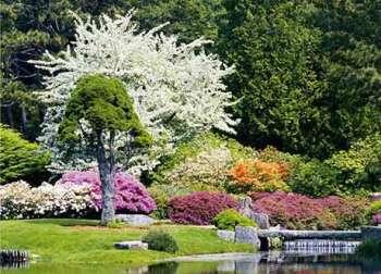 Ландшафтный дизайн участка вашего сада