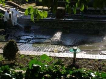Чистая вода в садовом пруду