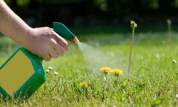 Токсичность гербицидов