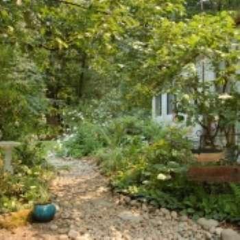Виды мульчи в саду